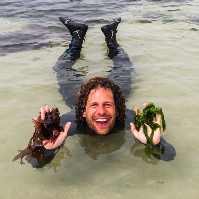 Video interview met Toine Wilke over de voordelen van zeewier